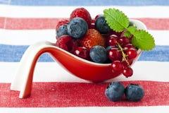 Varietà di frutta di bacca Fotografia Stock