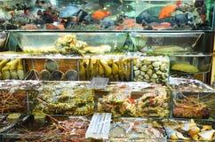 Varietà di frutti di mare in tensione freschi Fotografia Stock