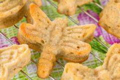 Varietà di muffin casalinghi nella forma della farfalla e della libellula Immagini Stock