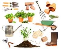 Varietà di oggetti per la sorgente che pianta sul bianco Immagini Stock