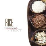 Varietà di riso Immagini Stock