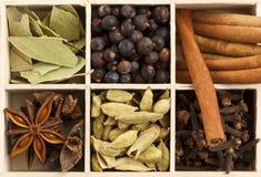 Varietà di spezie in casella di legno Fotografia Stock