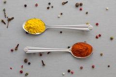 Varietà di spezie orientali in cucchiaio d'argento due Immagine Stock