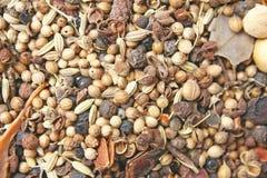 Varietà di spezie, di varie parti delle piante quali i semi, di foglie, di radici, ecc sia popolare produrre l'alimento immagine stock