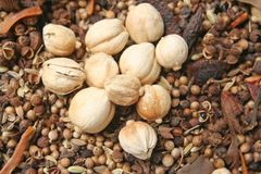 Varietà di spezie, di varie parti delle piante quali i semi, di foglie, di radici, ecc sia popolare produrre l'alimento fotografia stock