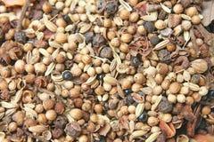 Varietà di spezie, di varie parti delle piante quali i semi, di foglie, di radici, ecc sia popolare produrre l'alimento fotografia stock libera da diritti