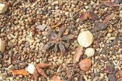Varietà di spezie, di varie parti delle piante quali i semi, di foglie, di radici, ecc sia popolare produrre l'alimento immagine stock libera da diritti