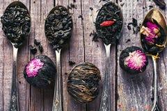Varietà di tè Immagine Stock