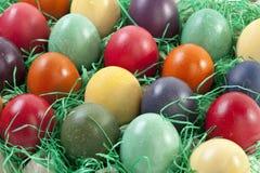 Varietà di uova di Pasqua in cartone dell'uovo Fotografia Stock Libera da Diritti