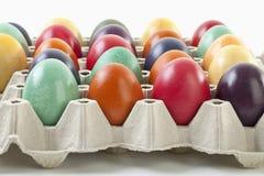 Varietà di uova di Pasqua in cartone dell'uovo Immagine Stock Libera da Diritti