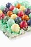 Varietà di uova di Pasqua in cartone dell'uovo su fondo bianco Immagine Stock Libera da Diritti
