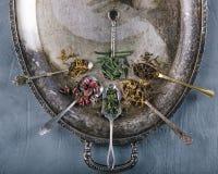 Varietà di verde e di tisane in cucchiaio sul vassoio d'annata del metallo Fotografia Stock