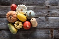 Varietà di zucche, di zucche, di blu e di zucche organici di kuri Fotografie Stock Libere da Diritti