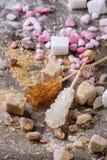 Varietà di zucchero Fotografia Stock Libera da Diritti