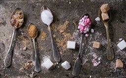 Varietà di zucchero Fotografie Stock Libere da Diritti