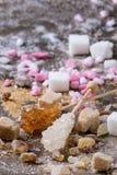 Varietà di zucchero Immagine Stock Libera da Diritti