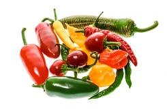 Varietà differente di peperoncini o di peperoncini rossi, isolata su bianco Fotografia Stock Libera da Diritti
