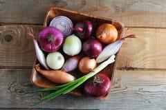 Varietà differenti della cipolla in un piatto di legno Immagine Stock Libera da Diritti