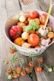 Varietà differenti di pomodori con aglio, basilico Fotografia Stock Libera da Diritti