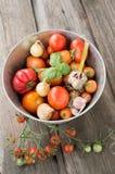 Varietà differenti di pomodori con aglio, basilico Fotografie Stock Libere da Diritti