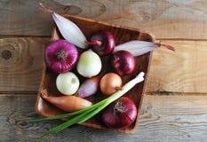 Varietà differenti in un piatto di legno - una selezione della cipolla del oni Immagine Stock