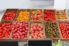 Varietà locali del negozio del supporto del mercato del pomodoro di tipi, generi di colori Fotografie Stock Libere da Diritti