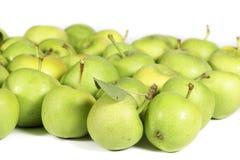 Varietà non commerciale di mele verdi su bianco Fotografia Stock