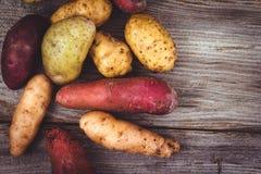 Varietà organiche fresche delle patate Immagine Stock Libera da Diritti