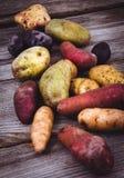 Varietà organiche fresche delle patate sopra la plancia Immagini Stock