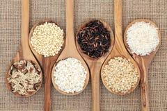 Varietà del riso Immagine Stock