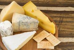 Varietes of cheese royalty free stock photos