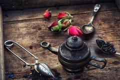 Varieties of dry tea Royalty Free Stock Photos