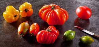 Varieties of fresh ripe healthy tomatoes Stock Photos
