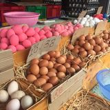 Assorted Eggs in Stalls available for sales at festival, cooking, restaurant. Varieties of hard skin Eggs in pink preserved boiled egg, salt preserved duck stock photos