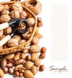 Varieties Of Nuts Royalty Free Stock Photos
