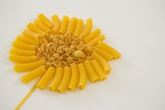Varieties of pasta forming flower Royalty Free Stock Photo
