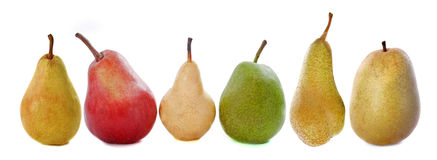 Varieties of pears Royalty Free Stock Photos