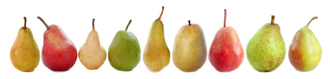 Varieties of pears Stock Images