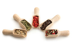 Varieties of pepper. Wooden scoops with varieties of pepper on white background royalty free stock image