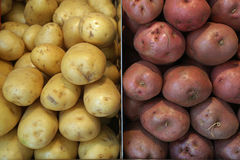 Varieties of potatoes Stock Photos