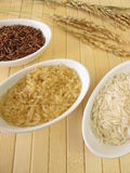 Varieties of rice Stock Images