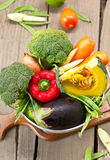 Varieties of vegetable in colander Royalty Free Stock Images