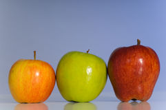 Variety of Apples Royalty Free Stock Photos
