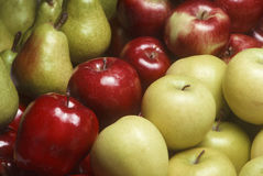 Variety of apples and Bartlet pears Stock Image