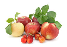 Variety of apples on white background Stock Photo