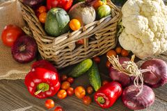 Vegetables harvest in  basket. Variety of autumnal harvest vegetables on a bench in the garden Stock Image