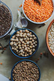 Variety of bean seeds in a bowl. On rustic background. Variety of bean seeds in a bowl Royalty Free Stock Photo