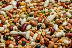 Variety of beans to include garbanzo, pinto, black, lentils and various others. Raw food background. Stock Images