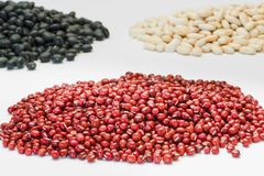 Variety beans on white background Royalty Free Stock Photography