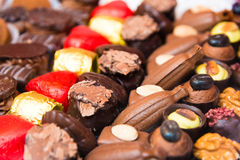 Variety of belgian chocolate pralines Stock Image